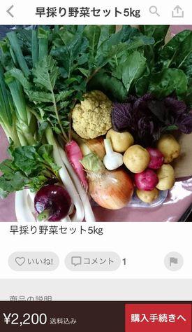 IMG_6233